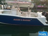 Defiant Catamaran
