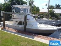 Blackfin Flybridge