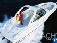 Sea Ray 290/295 Bow Rider