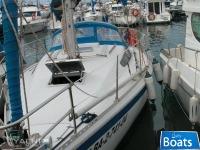 Gib'Sea 31