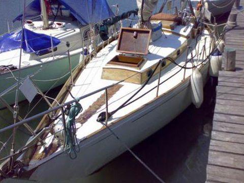 Apollonio Trieste One Tonner 36