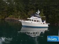 Selene Ocean Trawler 36