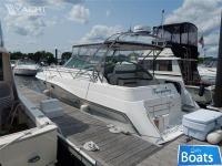 Cruiser's Inc 3675