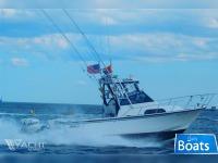 Boston Whaler 23 WA