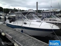 Sea Fox 256WA Pro Series