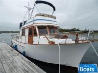 Trader Marine34 Double Cabin
