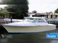 Bertram Custom 35