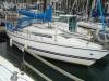 Pegasus Yachts Ltd Pegasus 800