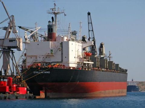 Cargo Bulker/Container/MPP LOLO