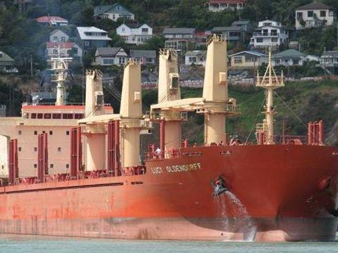 Cargo geared bulk log carrier