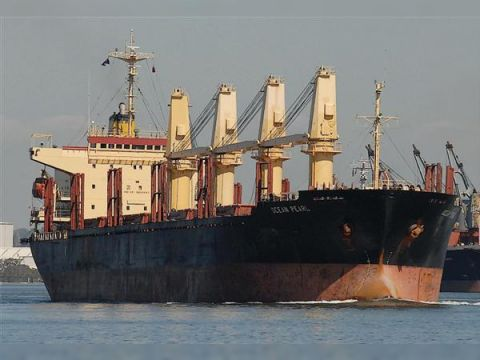 Cargo geared Bulk/Lumber Carrier built Japan