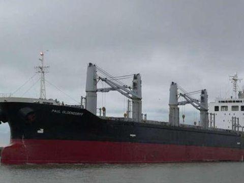 Cargo Panamax bulker built Japan