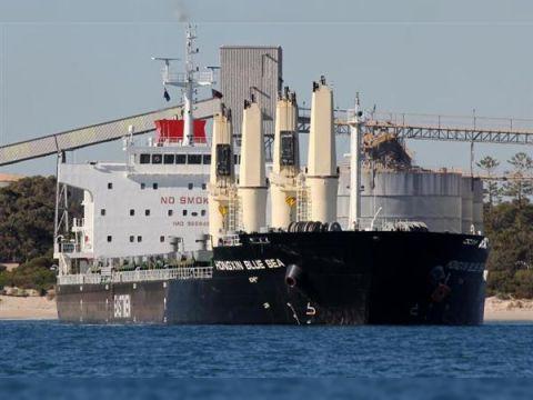 Cargo Handysize built in China