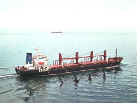Cargo Handy Bulker