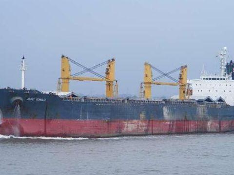 Cargo Class DNV-built in Japan
