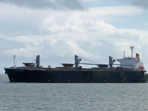Cargo Woodchip carrier built Japan