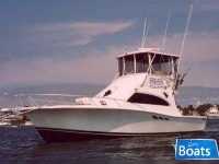 Luhrs Tournament SC 360