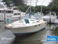 Express Bayliner Conquest 32