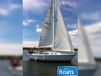 Catalina 30 Sloop