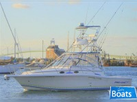 Pro Line 3310 Express Sportfish