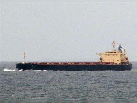 Cargo PNMX gearless ore/Bulkcarrier