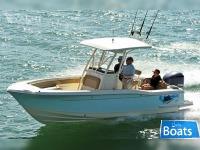 Scout Boat 245 XSF