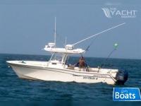 Grady White 306 Bimini