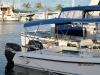Twin Vee 29 Ocean Cat