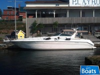 Sea Ray Sundancer 440