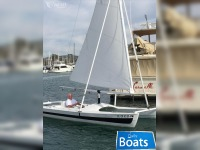 Custom Catamaran