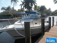 Cobia 260 Walkaround