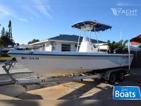 Sea Fox 245 Bay Fisher