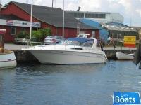 Sea Ray 350 EC