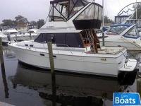 Bayliner 3288