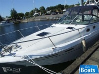 Sea Ray Ray 290 SD - SOLGT