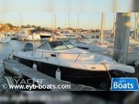 KELT WHITE SHARK 236