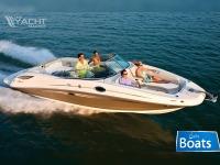 Sea Ray 300