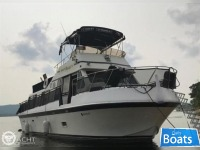 Blue Water Boats Tri Cabin 40