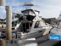Sea Ray 430 Convertible