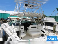Sea Ray 400express cruiser