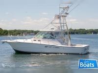 Rampage Yachts 38 Express