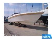 CIGALA E BERTINETTI43 SHARK