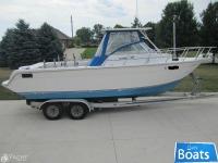 Baha Cruisers 271 WAC