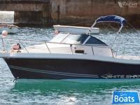 KELT WHITE SHARK 237