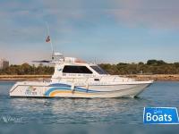 Cata 326 Catamaran