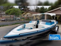 Cole Boats 22.4 SKIER