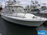 Blackfin 29 Blackfin Combi