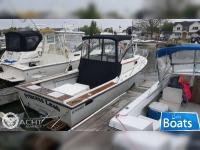 Steiger Craft 23 Block Island