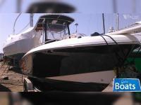 Bluefin 25 C/C