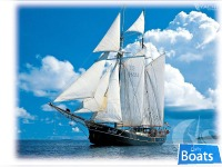 Van Meer Redesign Tall Ship,Top Sails Schooner